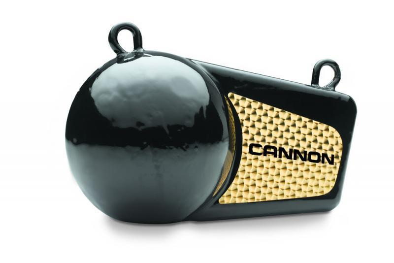 Cannon Downrigger Weight 2 7kg Technology For Anglers