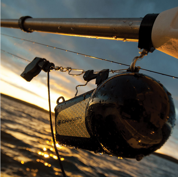 Cannon Downrigger Weight 4 5kg Technology For Anglers